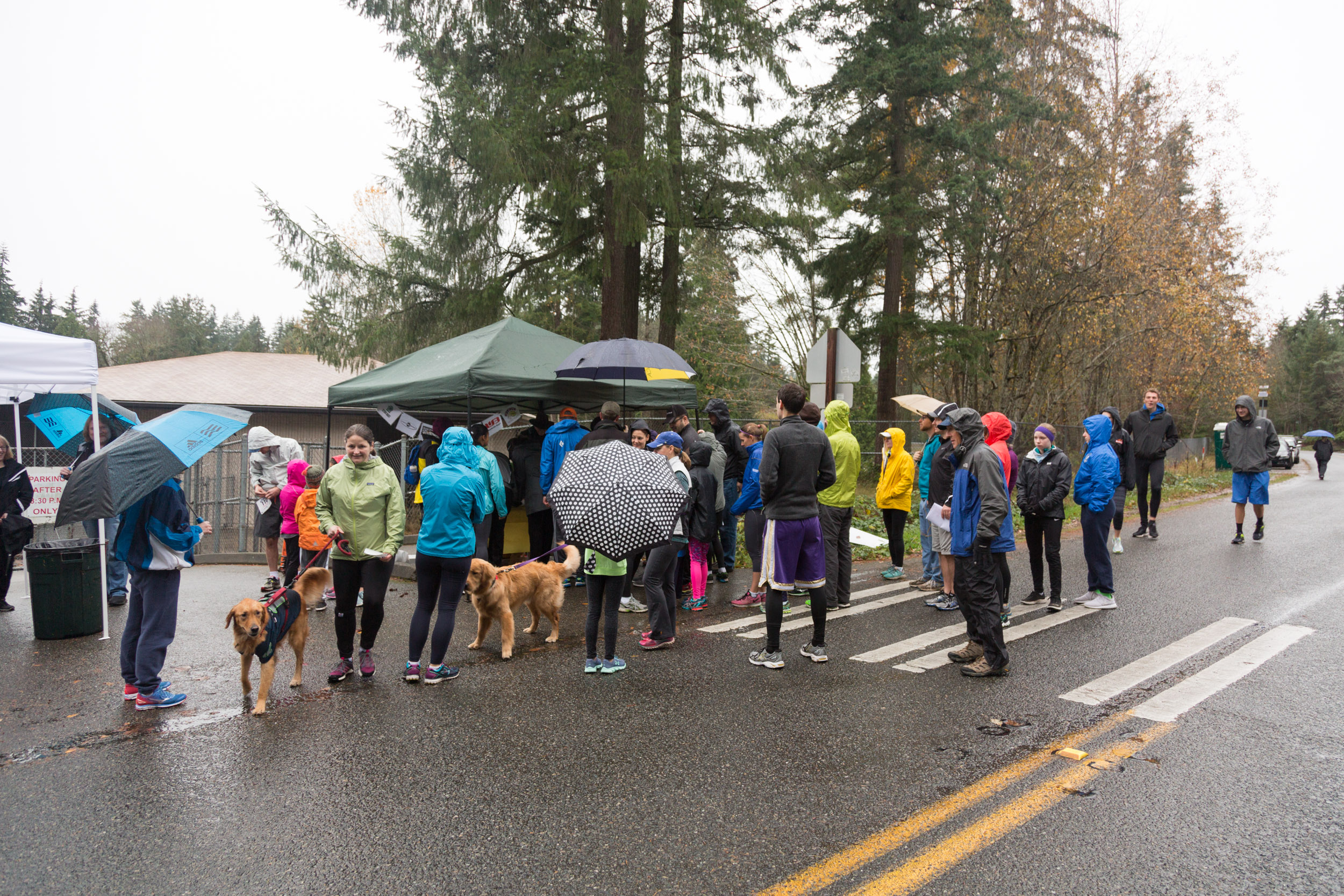English Hill Turkey Trot 2016-4